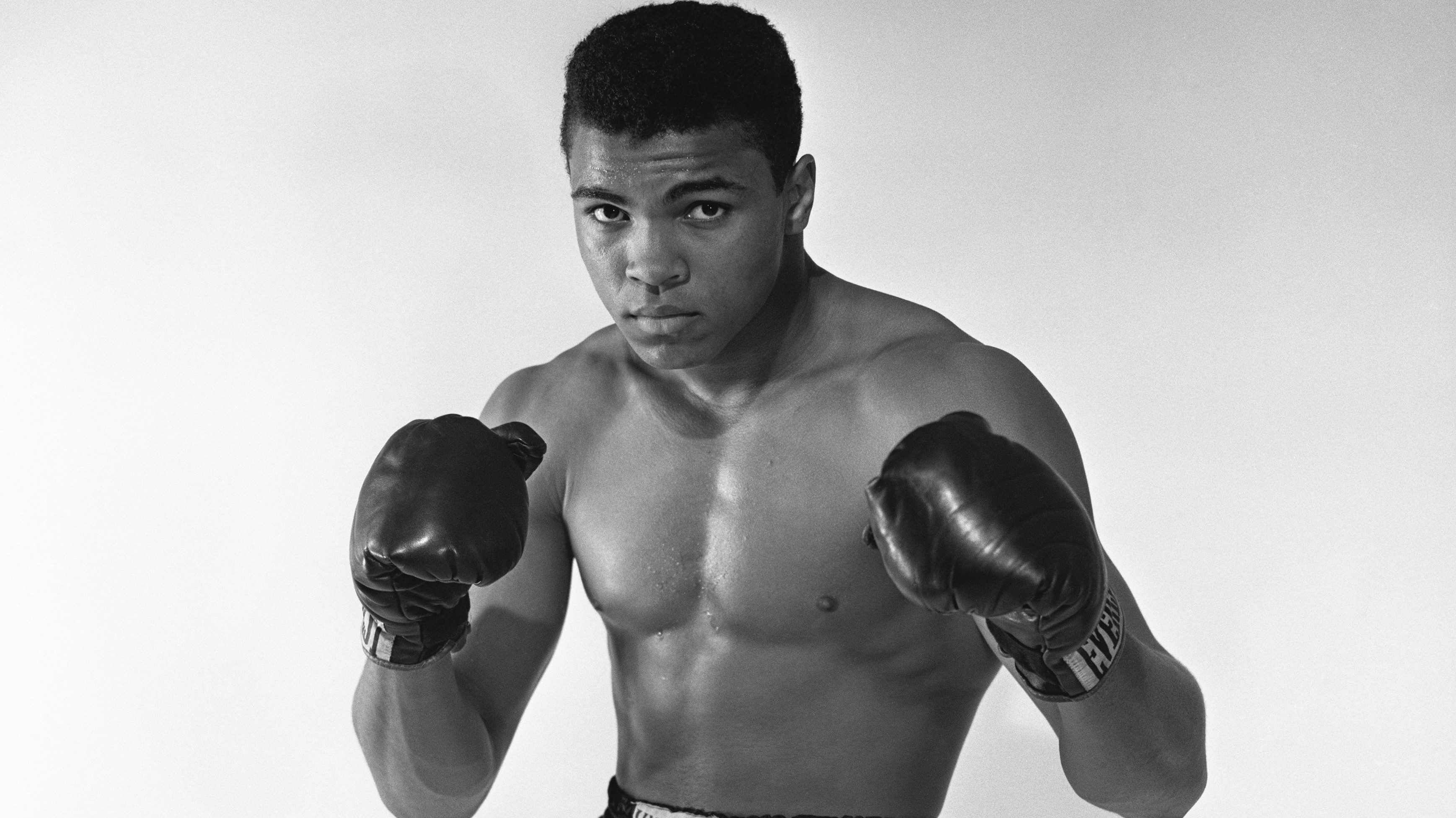an introduction to the life of muhammad ali 10 life lessons from muhammad ali  the fact was that muhammad ali would have to have been one of the greatest and famous boxers to enter  we have one life .