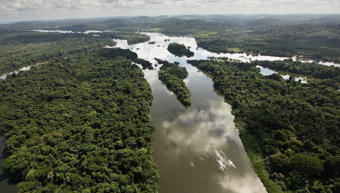What If the Amazon Rainforest Wasn't Always So Wild?