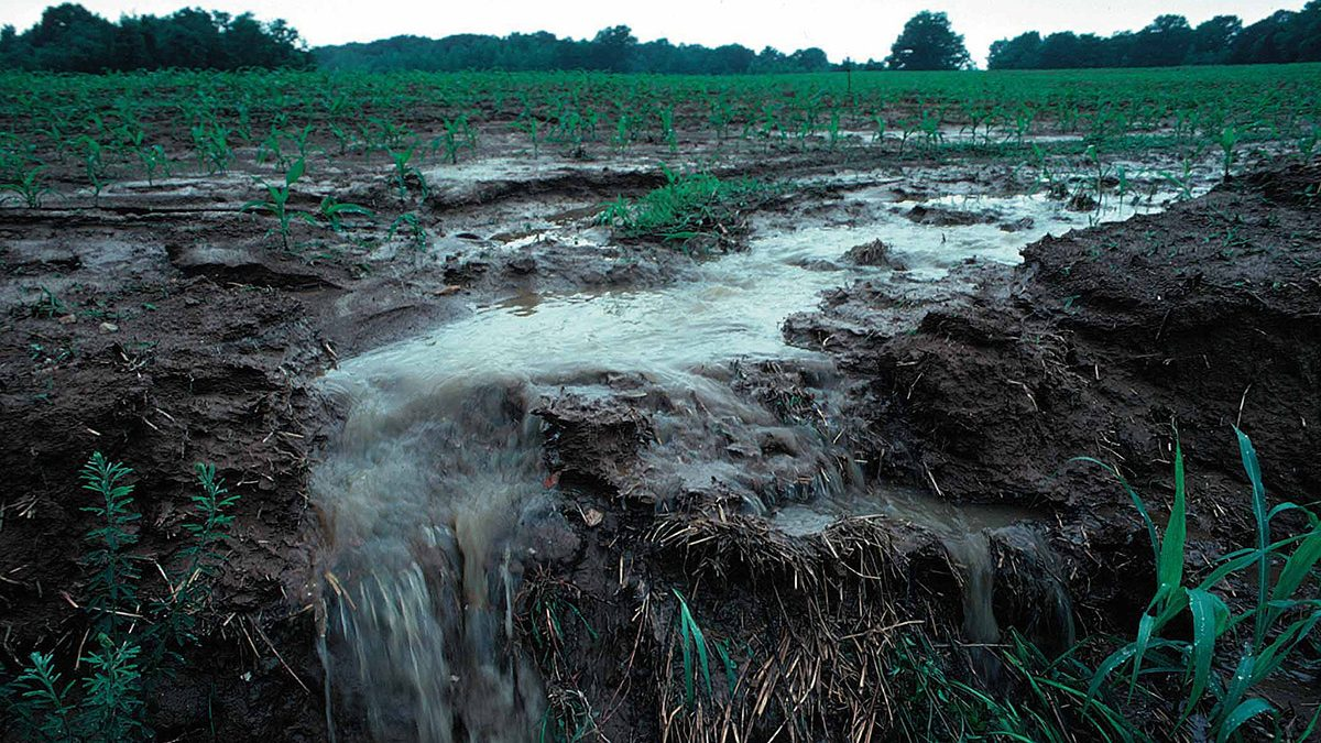 Gypsum Is a Key to Reducing Water Pollution