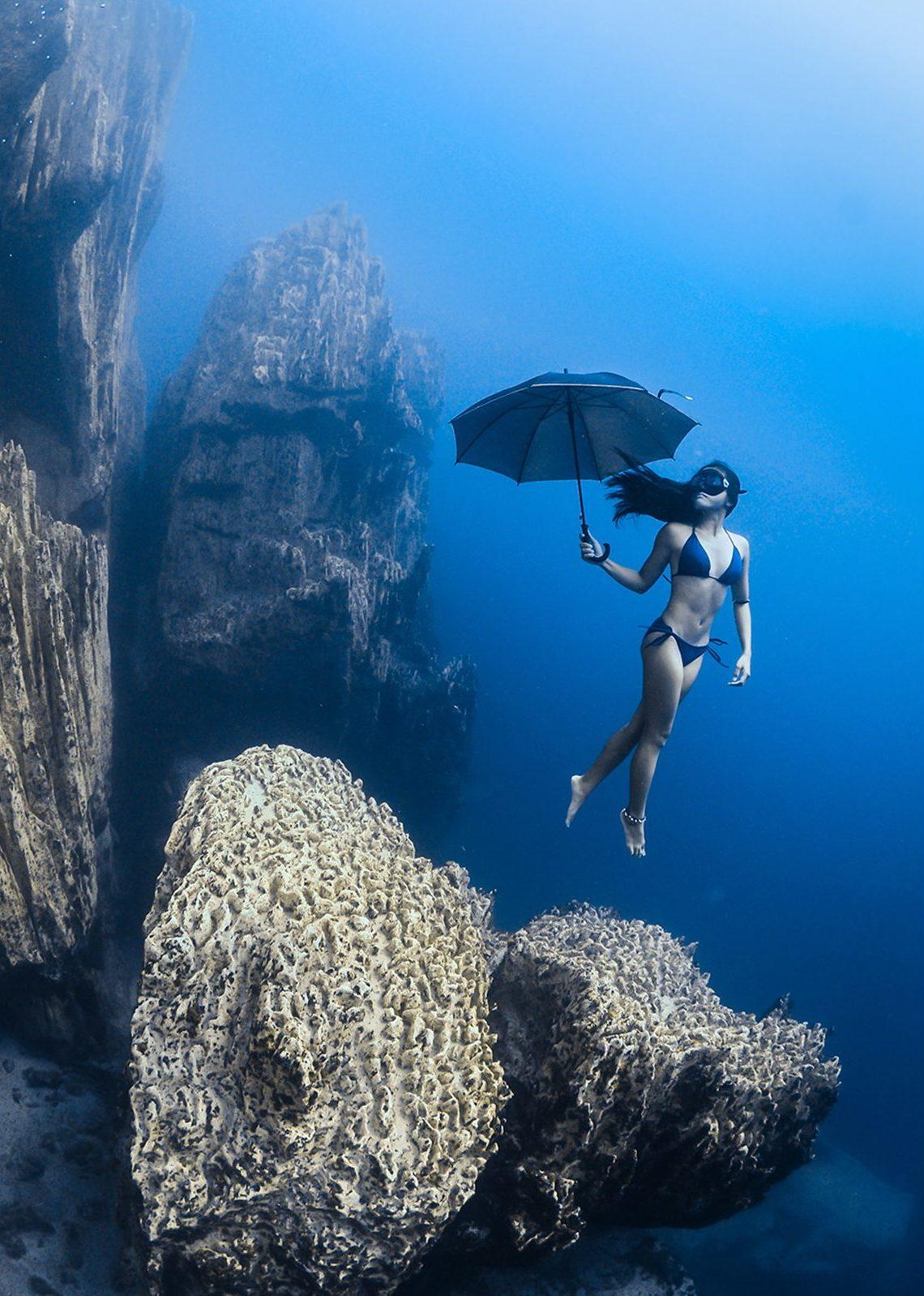 Winners From the 2016 Ocean Art Underwater Photo Contest