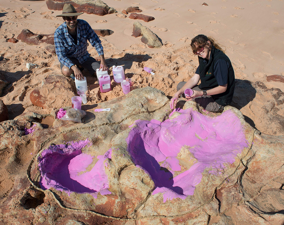 The World's Largest Dinosaur Footprints Discovered in Australia