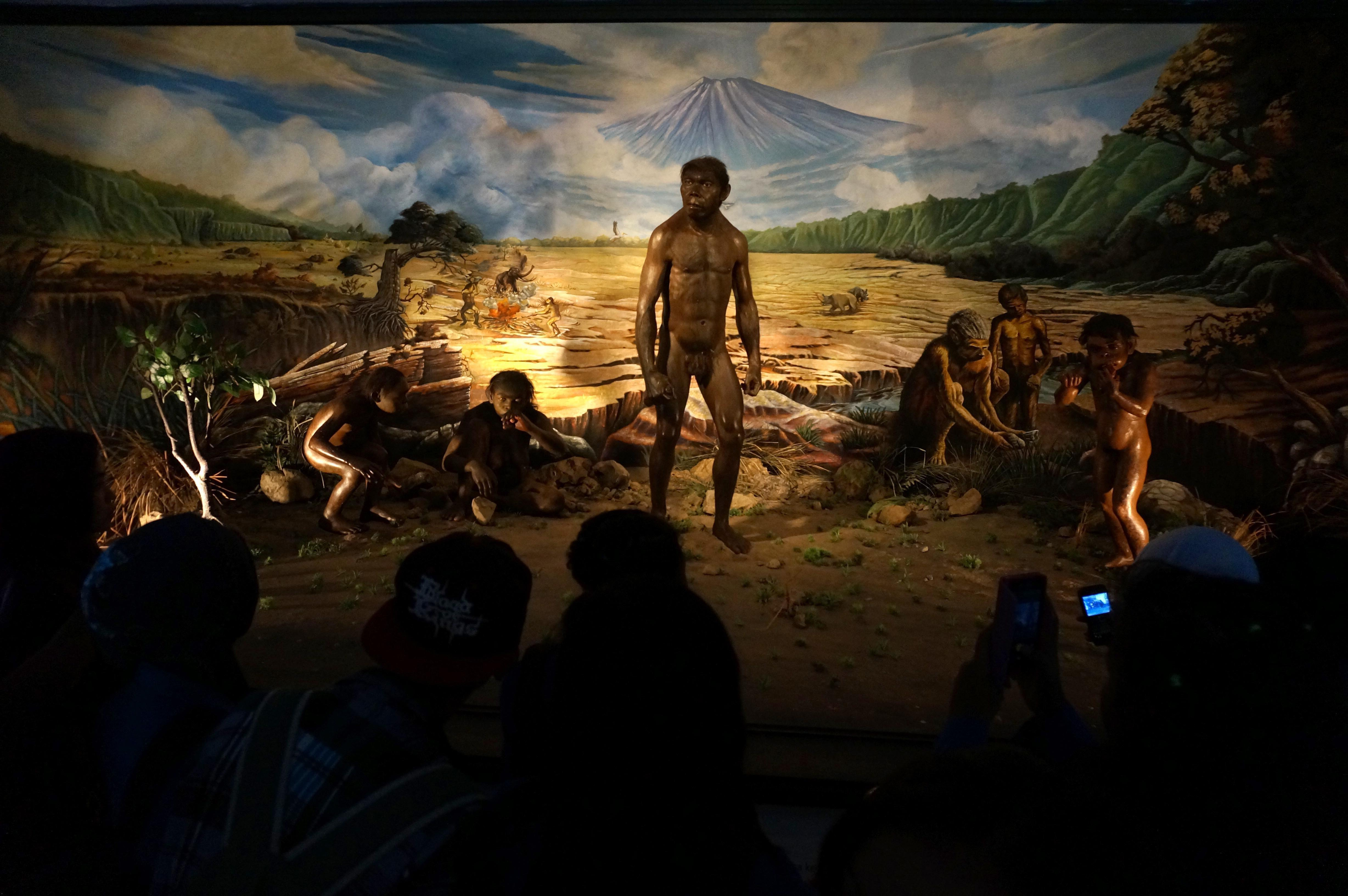 Homo Erectus May Have Been a Sailor Who Could Speak