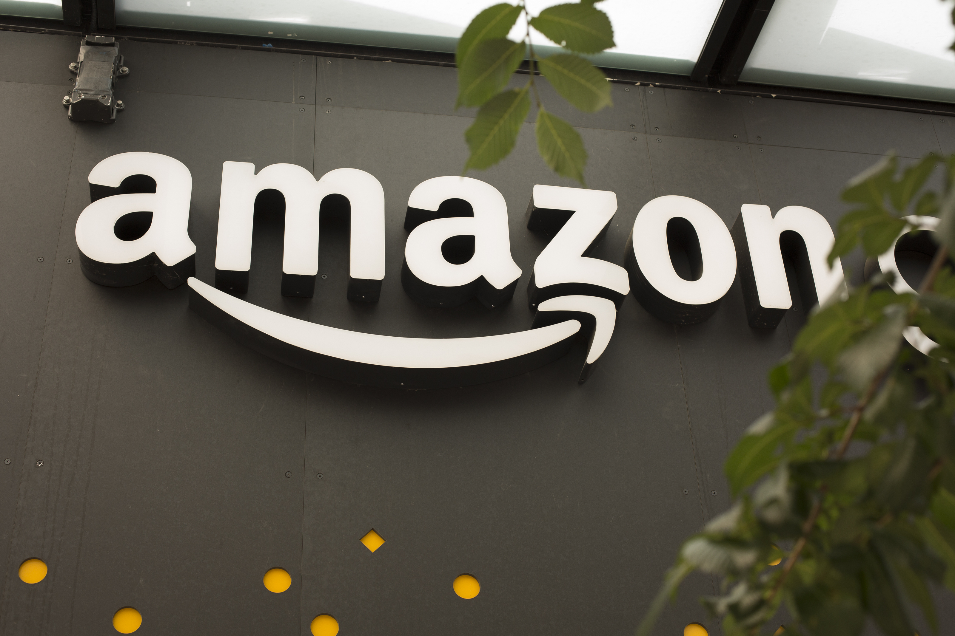 24 Amazon Employees Hospitalized After Robot Accidentally Released Bear Spray